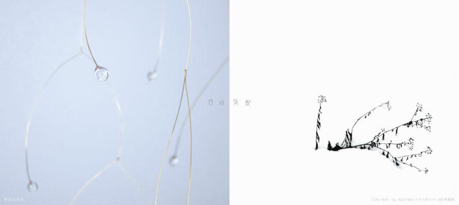 tokiori企画 九『白の気配』